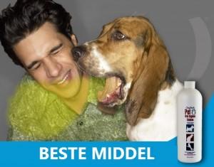 symptomen hond stinkt uit bek